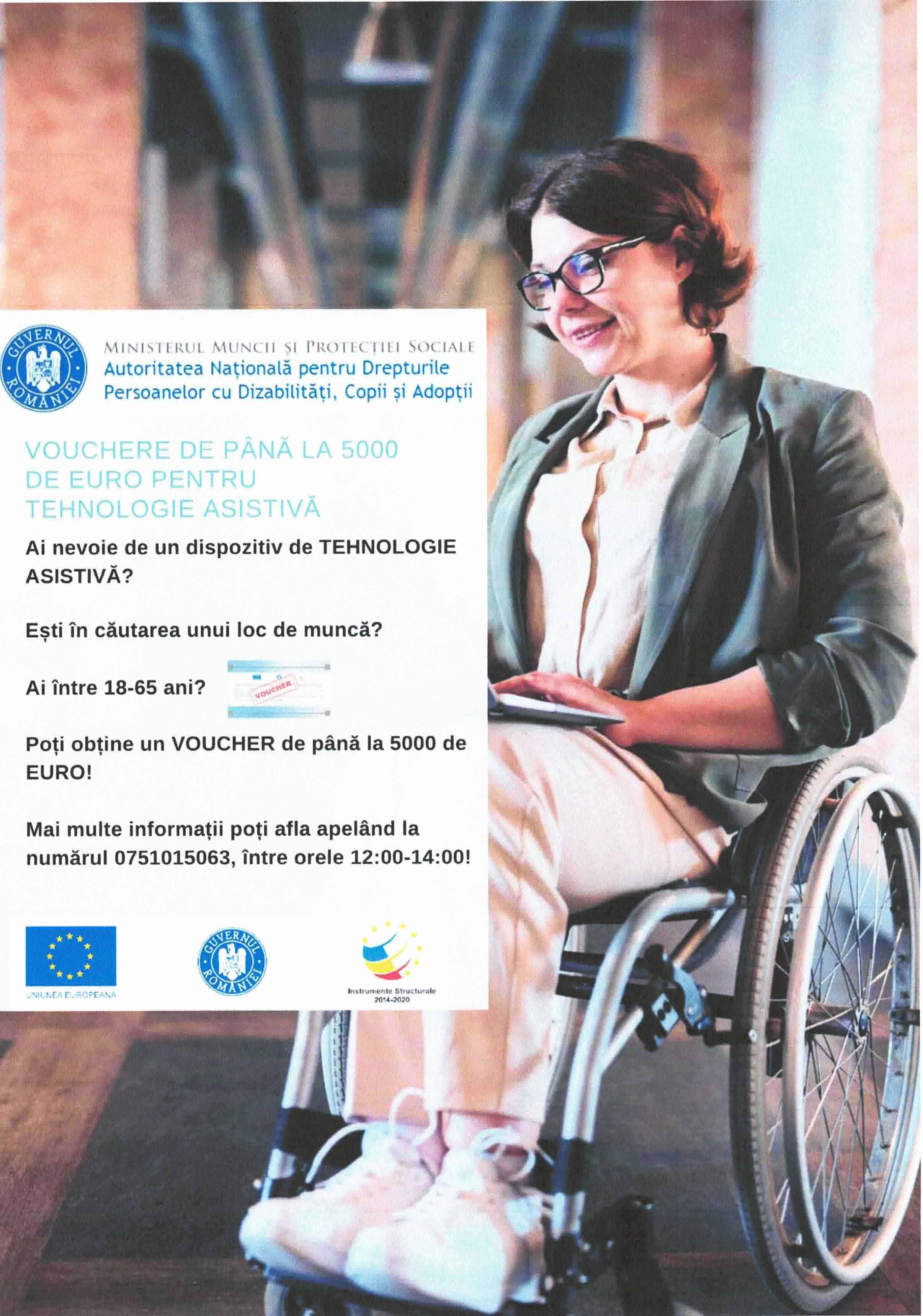 proiect-facilitarea-insertiei-pe-piata-muncii-a-persoanelor-cu-dizabilitati